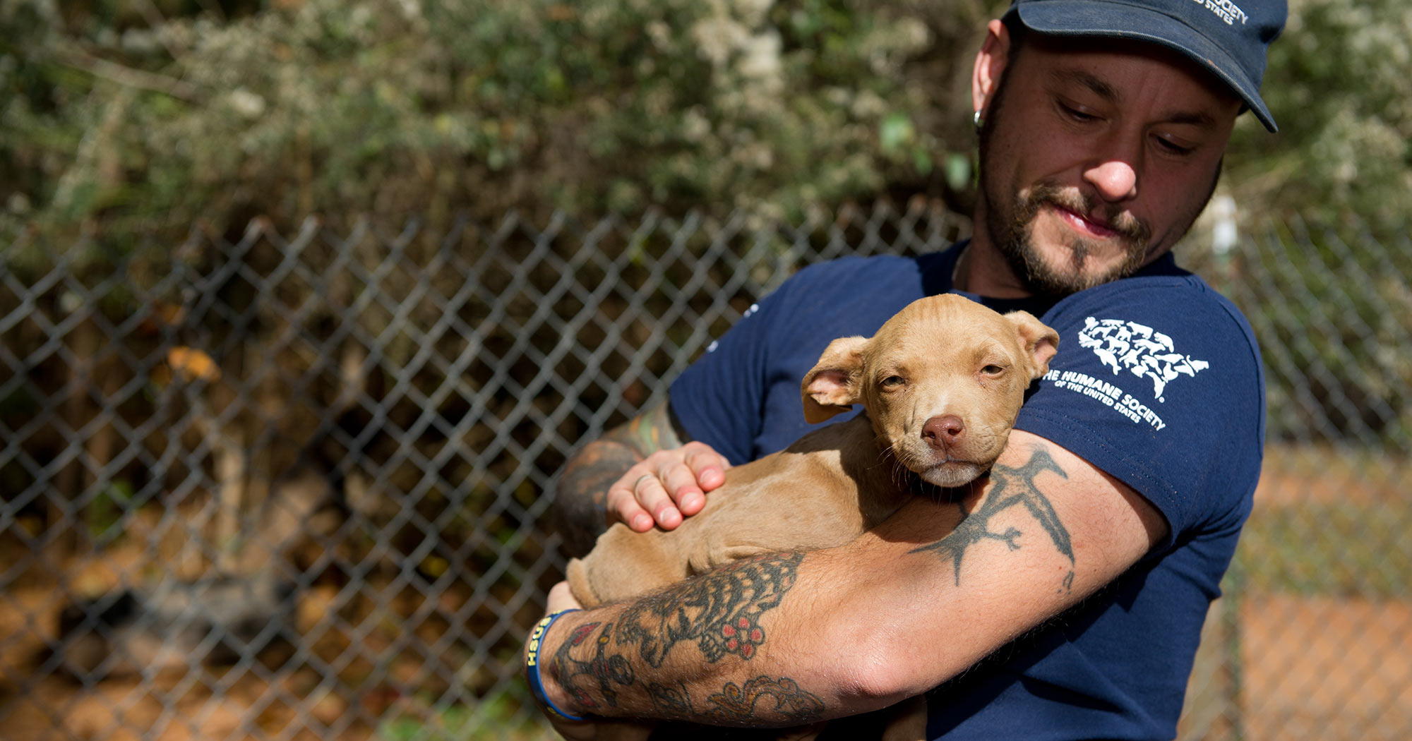 Our mission | The Humane Society of the United States
