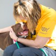 HSUS volunteer cuddling with a dog