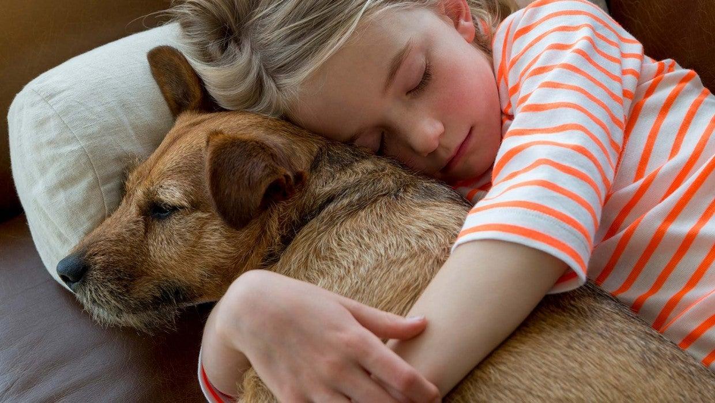 Αποτέλεσμα εικόνας για how pets can make you happy and healthy