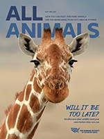 All Animals magazine November/December 2019 cover image