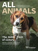 All Animals magazine January/February 2020 cover image