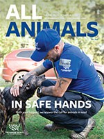 All Animals Fall 2020 magazine cover showing Adam Parascandola and dog