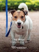 HSUS Pet Tips eBook cover