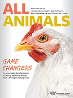 All Animals magazine March/April/May 2020 cover image