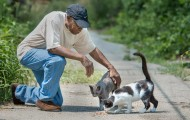 Man visits with some neighborhood kitties.