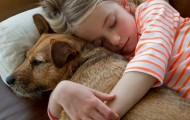 Dog and girl snuggling on the couch