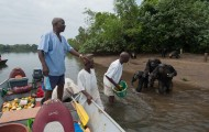 Caretakers on a boat feeding chimpanzees on the shore in Liberia