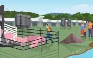 Illustration of a factory farm with man herding pigs into a truck, pollution and a family nearby