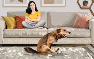 Illustration of a woman on a couch watching her dog scratch his butt on the rug.