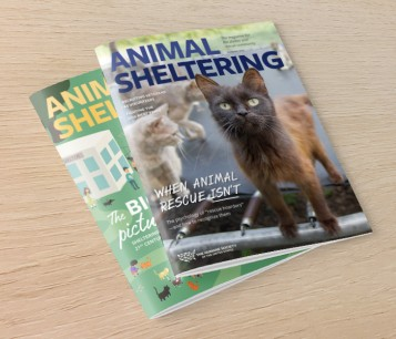 Animal Sheltering magazine cover images on a table
