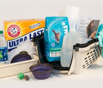 Emergency kit, including pet food, a carrier, litter, water, toys, medications, water, towels, etc