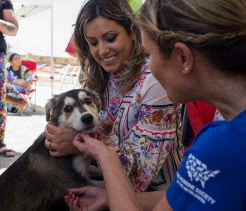 Dog at spayathon PR with HSUS staff and First Lady Beatriz Rossello