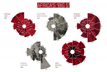 Data charts of the numbers of Africa's Big 5 killed each year
