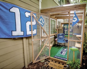Seahawks themed catio