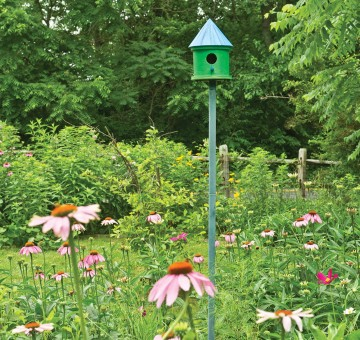 Birdhouse in a garden