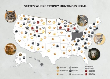 Map showing states where trophy hunting is legal