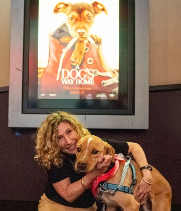 Kitty and dog at movie screening