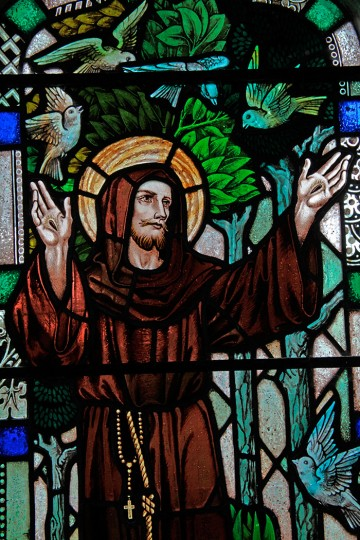 Stained glass window of St. Francis of Assini