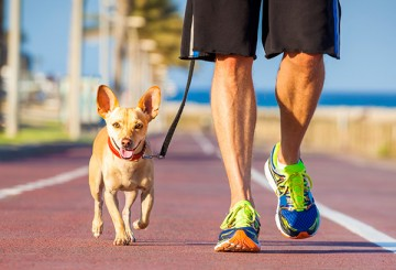 Man and dog jogging on a track
