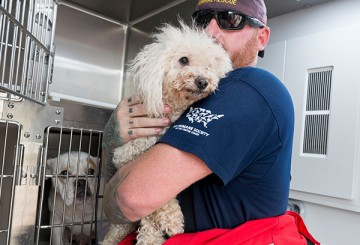 A dog being placed in a cage after being rescued from Hurricane Harvey.