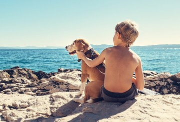 A boy and a dog on the beach
