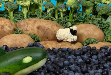 Vegetable scene of a cauliflower and blackberry lamb on a potato and broccoli landscape with a cucumber whale swimming in a blueberry ocean.