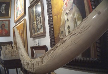 A full carved elephant tusk for sale ($600,000) at L'Enfant Gallery, Washington, DC.