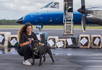 The Humane Society of The United States | The Humane Society
