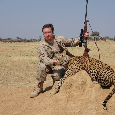 A male leopard of approximately 70 kg is shot in Namibia by a white hunter