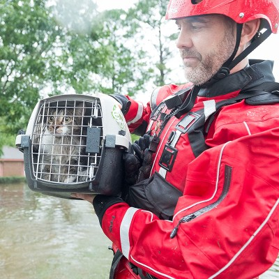 Cat being rescued from flooding during Hurricane Harvey in 2017