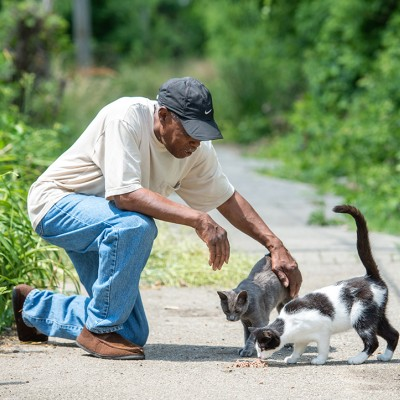 Laward Ellison petting two community cats